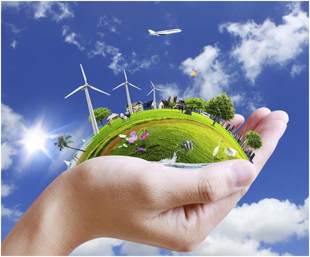 Зеленая экономика: в каких отраслях Россия может обогнать Запад