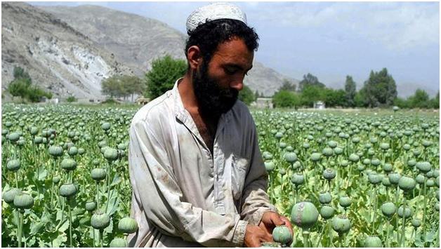 Постамериканская экономика Афганистана: на чем будет зарабатывать страна