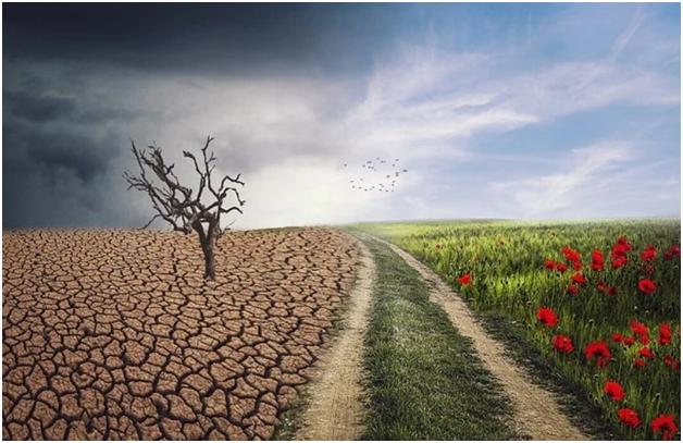 Климатические изменения — снова про деньги?